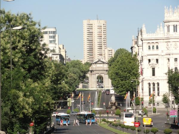 ŽELJKA RAJIĆ ARALICA MADRID